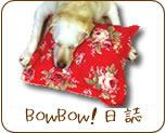 愛犬とスマイルライフBowBow!日誌