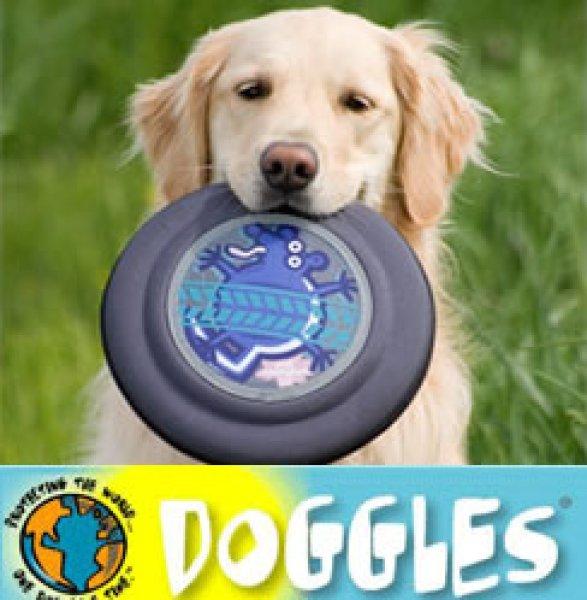 画像1: 愛犬大好き【DOGGLES】Flying Disc フリスビー (1)
